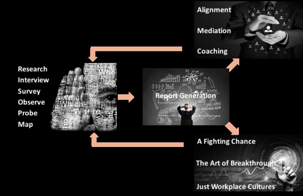 Visual Workflow.png