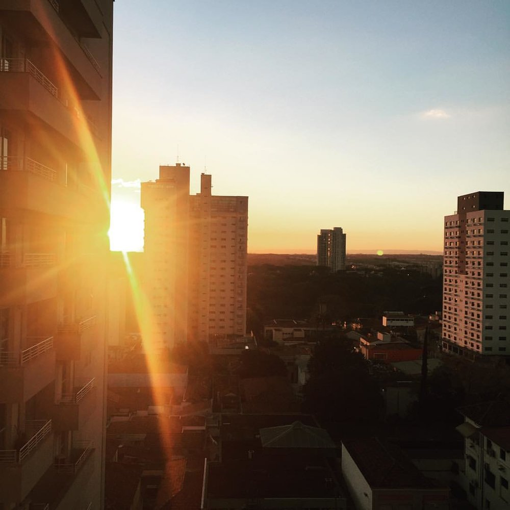 Let the light shine through. 🌇#sunset #piracicaba #brasil #singerontheroad