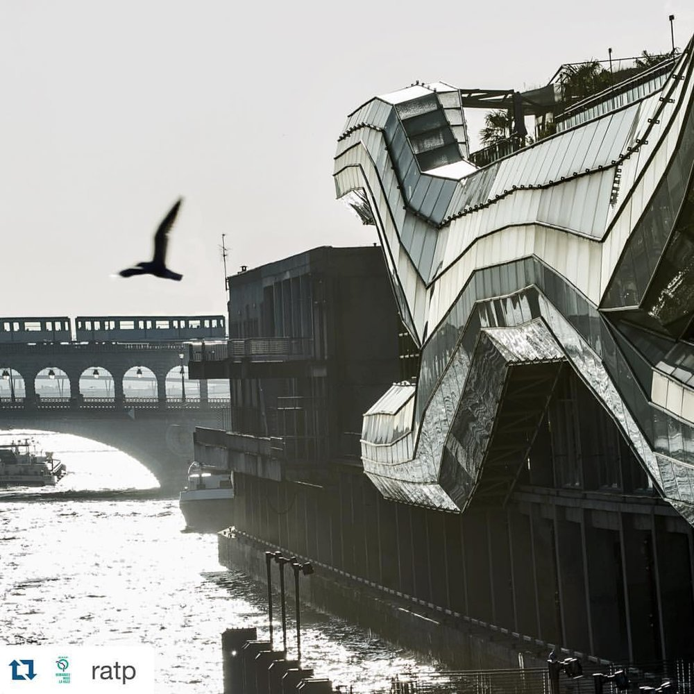 Good Morning. Beautiful image. #paris #citedelamode #wanderlust #Repost @ratp with @repostapp.  ・・・  Quai d'Austerlitz, avec deux ailes. © Denis Sutton  #DemandezNousLaVille #Metro #RATP #Bird #Austerlitz #ParisPhoto #happymonday (à Quai D Austerlitz Bord De Seine)