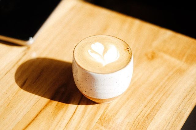 We're over here pretending it's Spring (it's ❄️ ❄️❄️in Brooklyn) . Cashew-cortados are helping . Check out the link in our bio for our home products or to book us for a spring coffee event. See you soon!