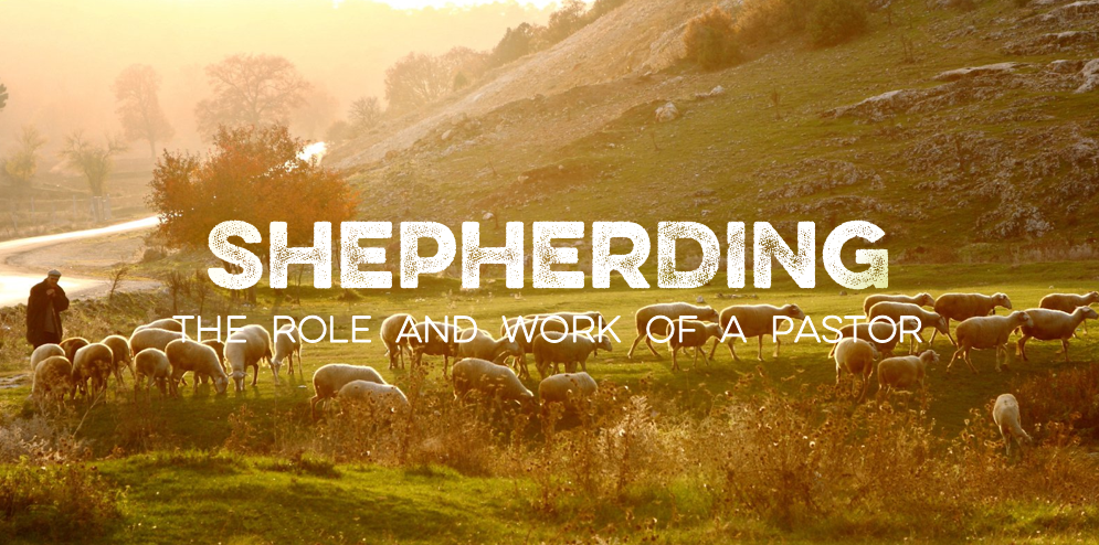 shepherding role and work of a pastor.PNG