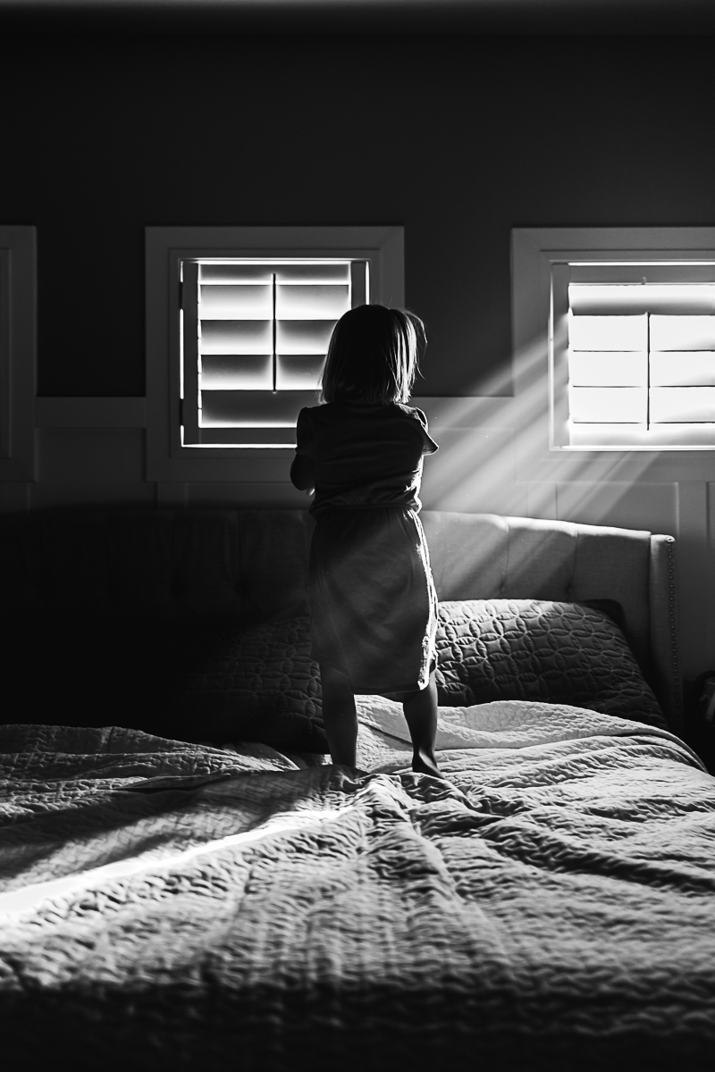 Luminous Window-8.jpg