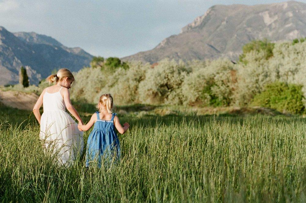 Meadow-6.jpg