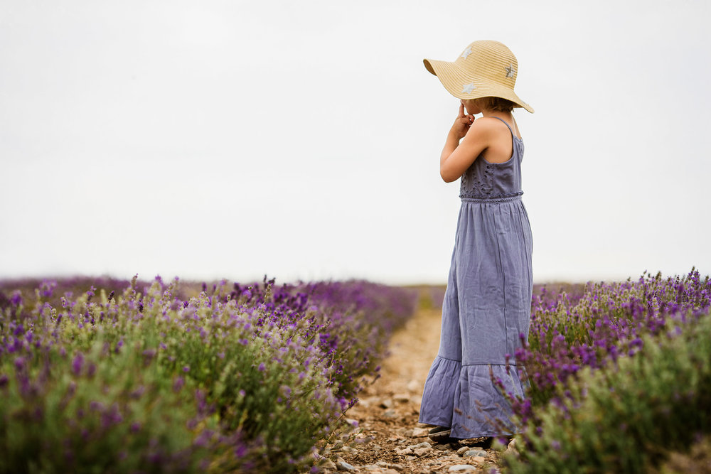 Blog Lavender-1.jpg