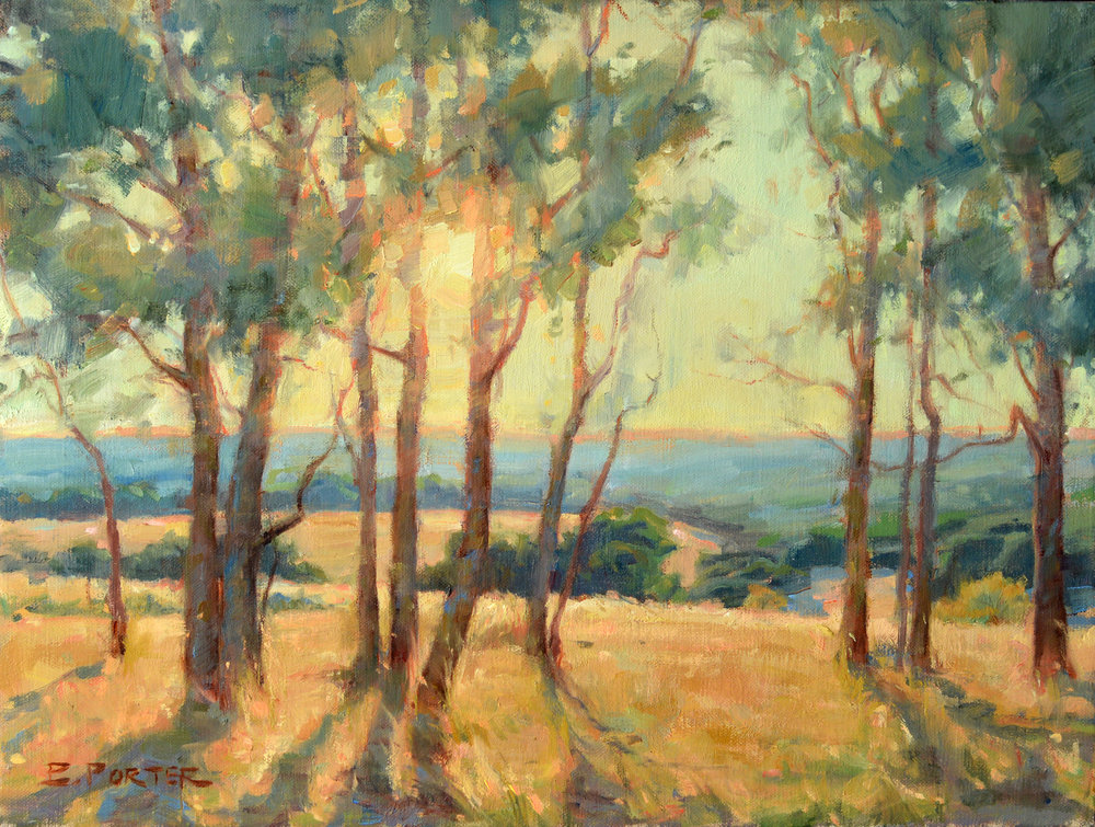 Texas Hill Country Overlook, 12x16 Oil on stretched linen