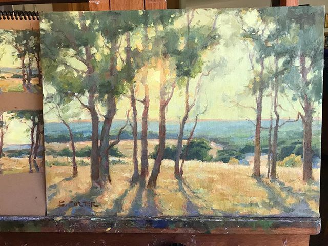 Pretty much done with this one. 12x16. . . . . . #oilsketch #pleinair #landscapepainting #oilpainting #artdaily #creativeuprising #sketch #🎨 #paintingoutdoors #allaprima #realistart #impressionism #traditionalart #paintfromlife #dailysketch #fineart #artcollector #pleinairpainting #artoftheday #artlife #texashillcountry