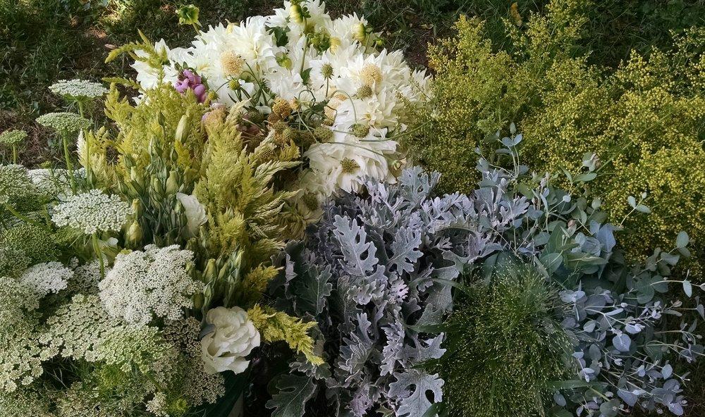 bulk flower order