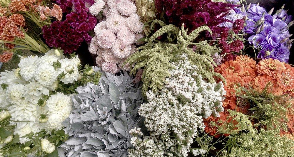 bulk DIY wedding flowers