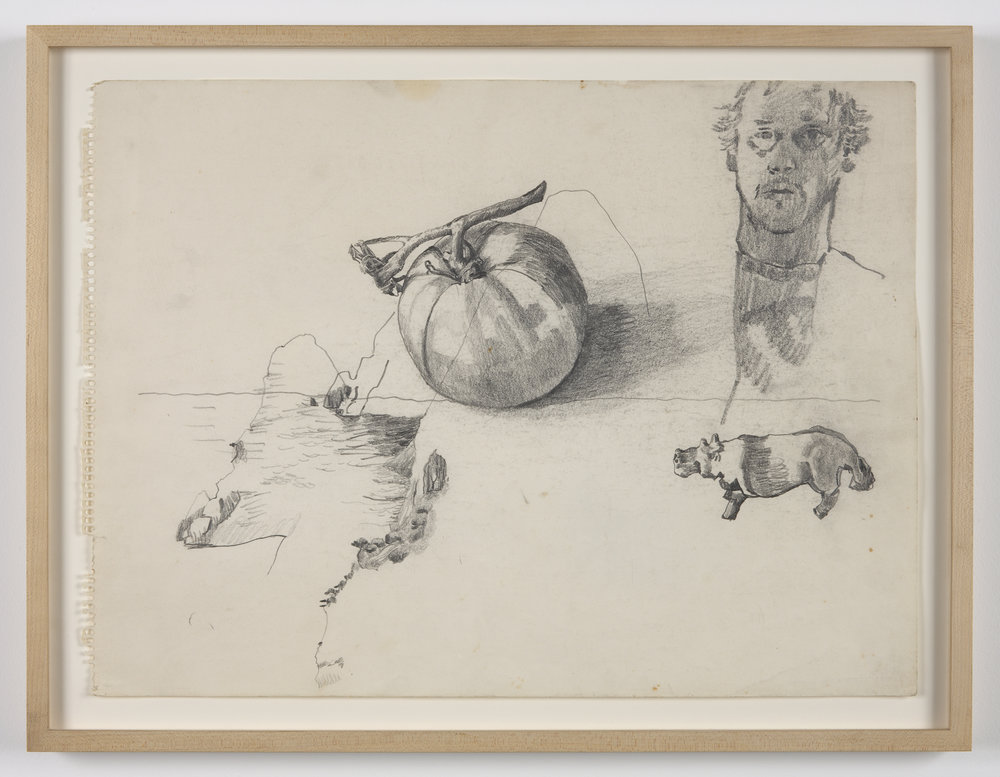 Untitled  (self-portrait, tomato, hippo) ca. 1970 pencil on paper 14 1/8 x 19 in/36 x 48.5 cm Photo: Joerg Lohse ©Estate of George Paul Thek, Courtesy Alexander and Bonin, New York