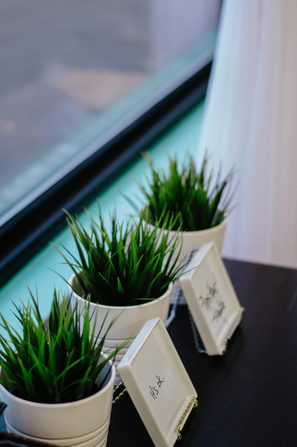 ikeaplants.jpg