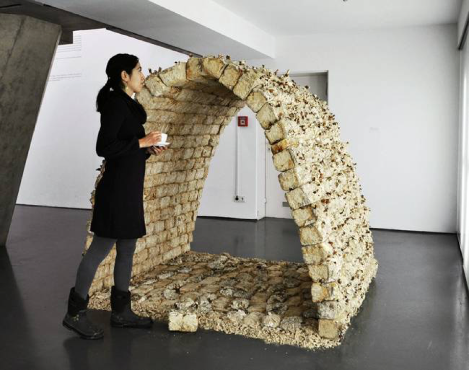 http://www.treehugger.com/green-architecture/mycotecture-mushroom-bricks-philip-ross.html