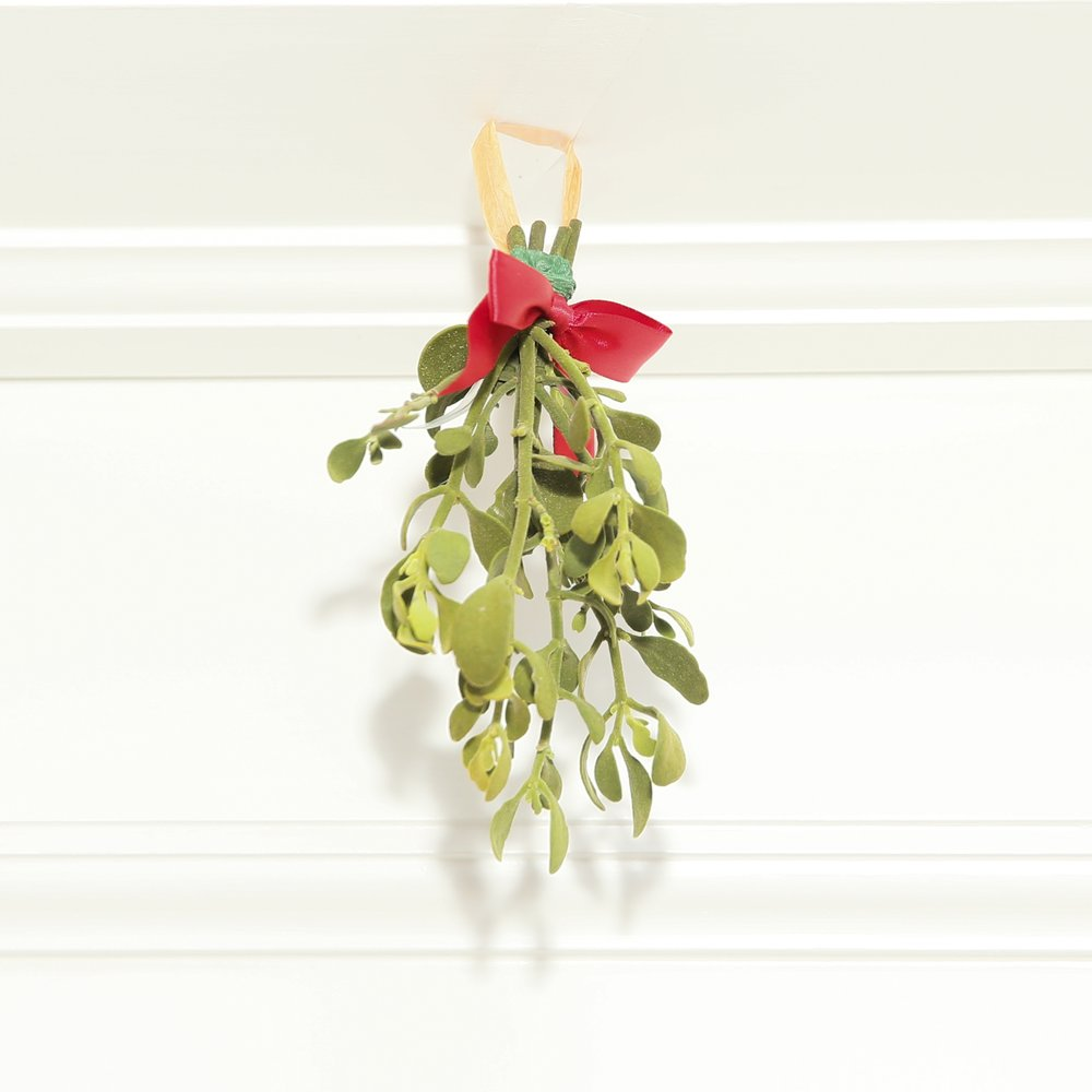 Mistletoe. Photo credit: Noa Griffel for BFA