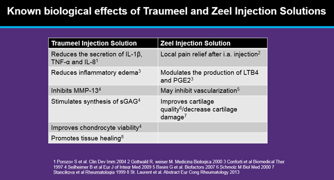 biological-effects-of-traumeel-zeel-injection-solutions.jpg