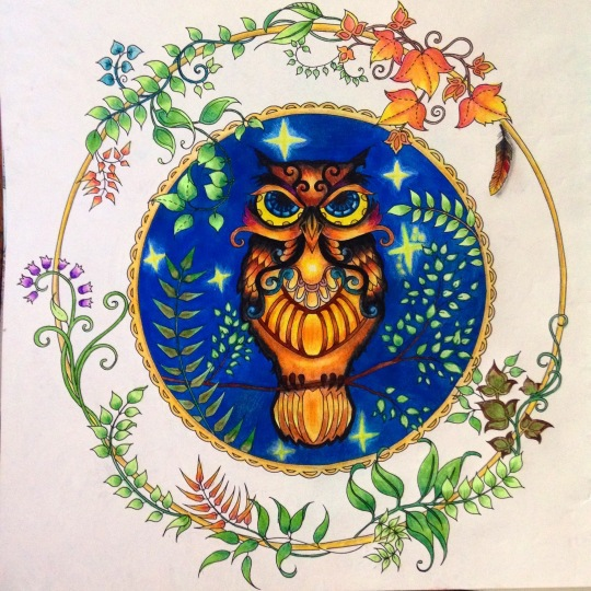 Hot-sale-Enchanted-Forest-kids-adult-coloring-books-libros-Relieve-Stress-Painting-Drawing-Book