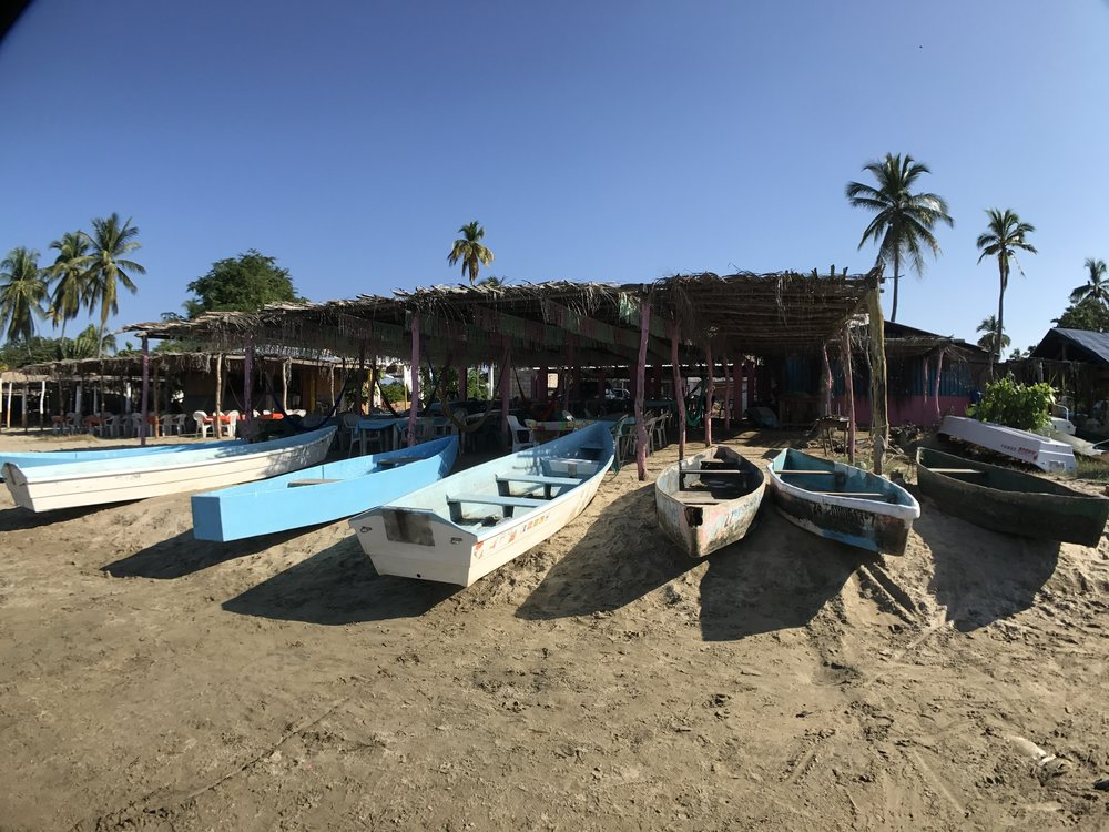 6 things to do in Zihuatanejo - Barra de Potosi Mangrove Boats