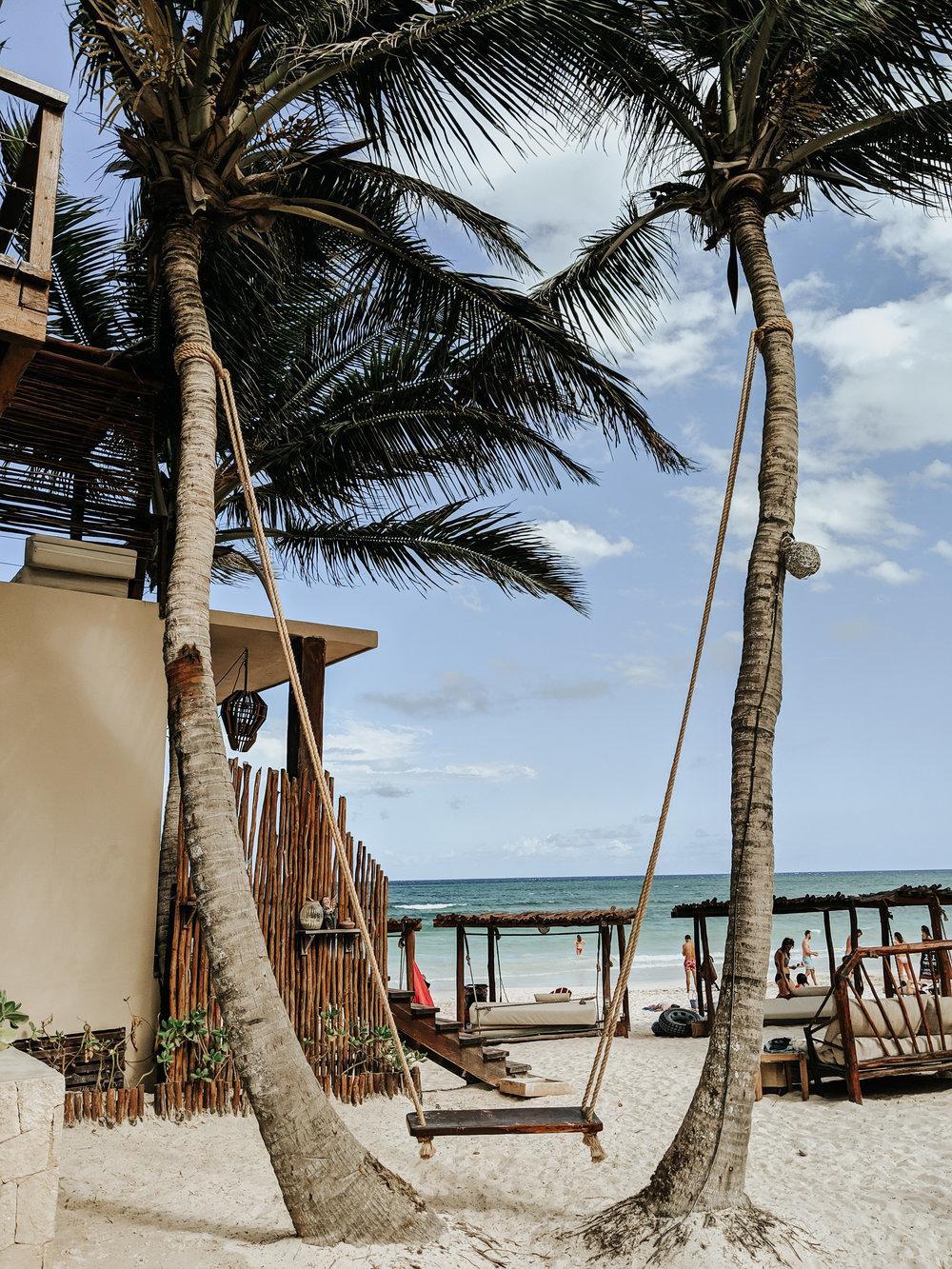 Image: Tulum Travel Tips - La Zebra Hotel Tulum - Best Hotels Tulum