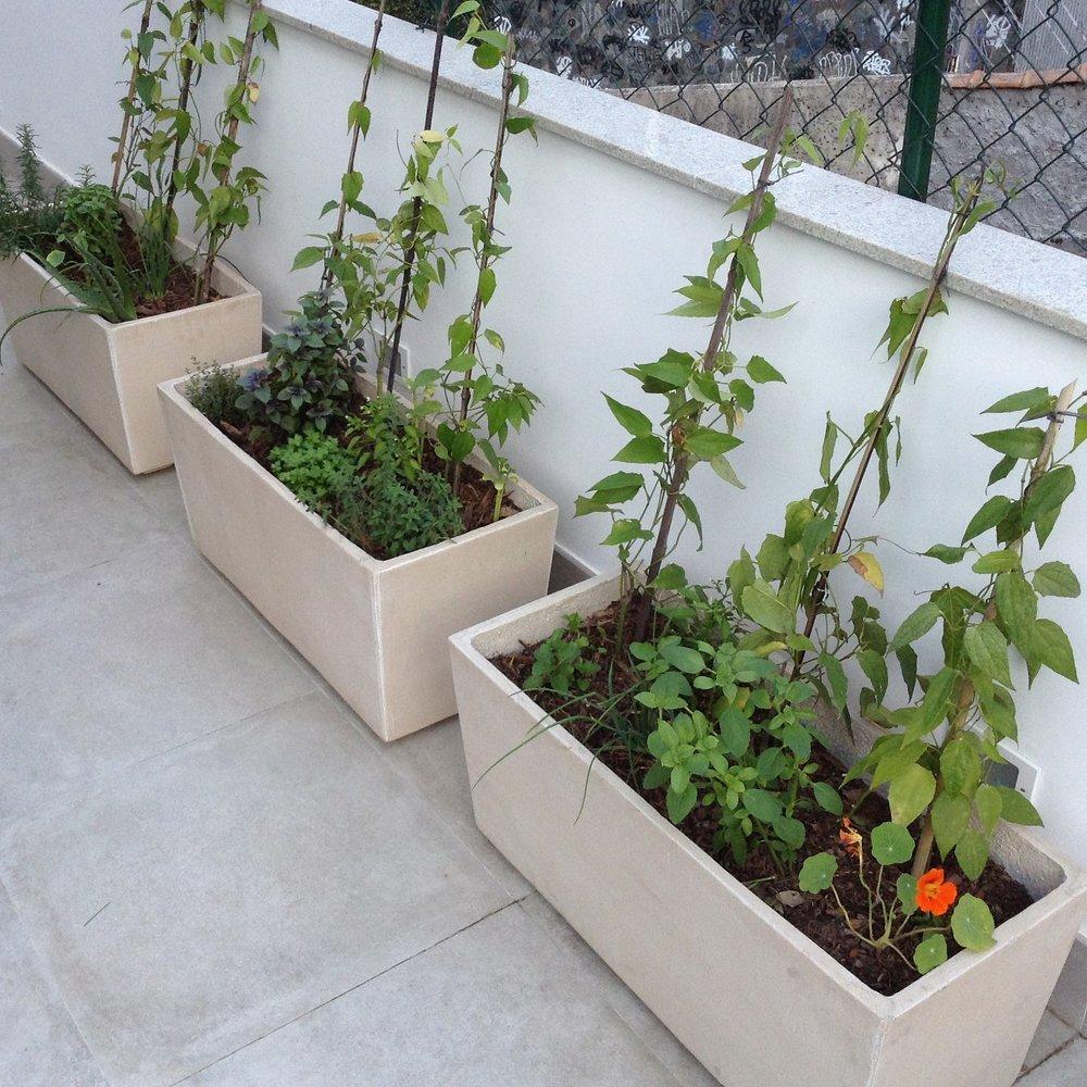 Jardineiras em um terraço