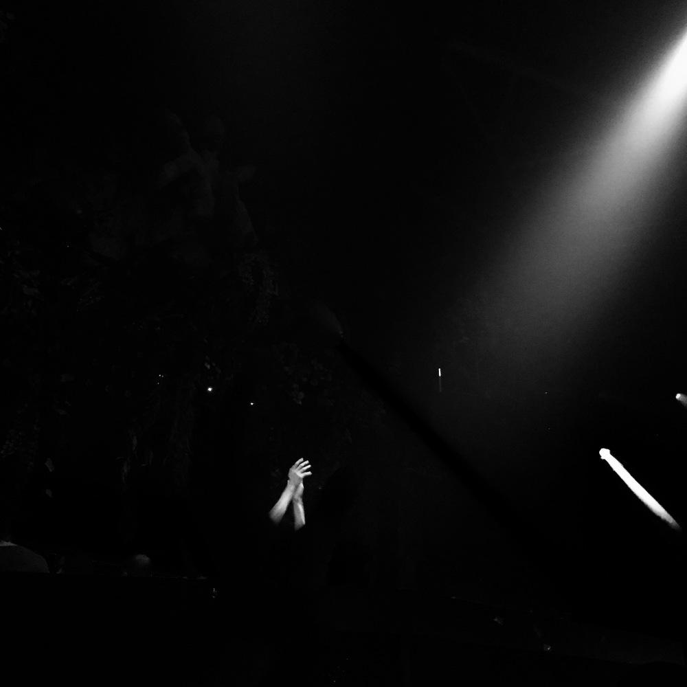 Steve Aoki, Hakkasan, MGM Grand