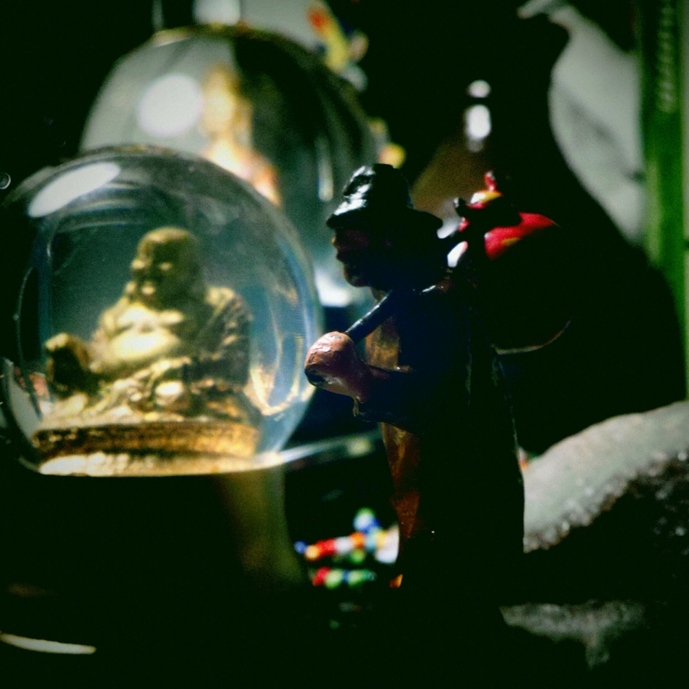 the stillness of… the snow-globe buddha