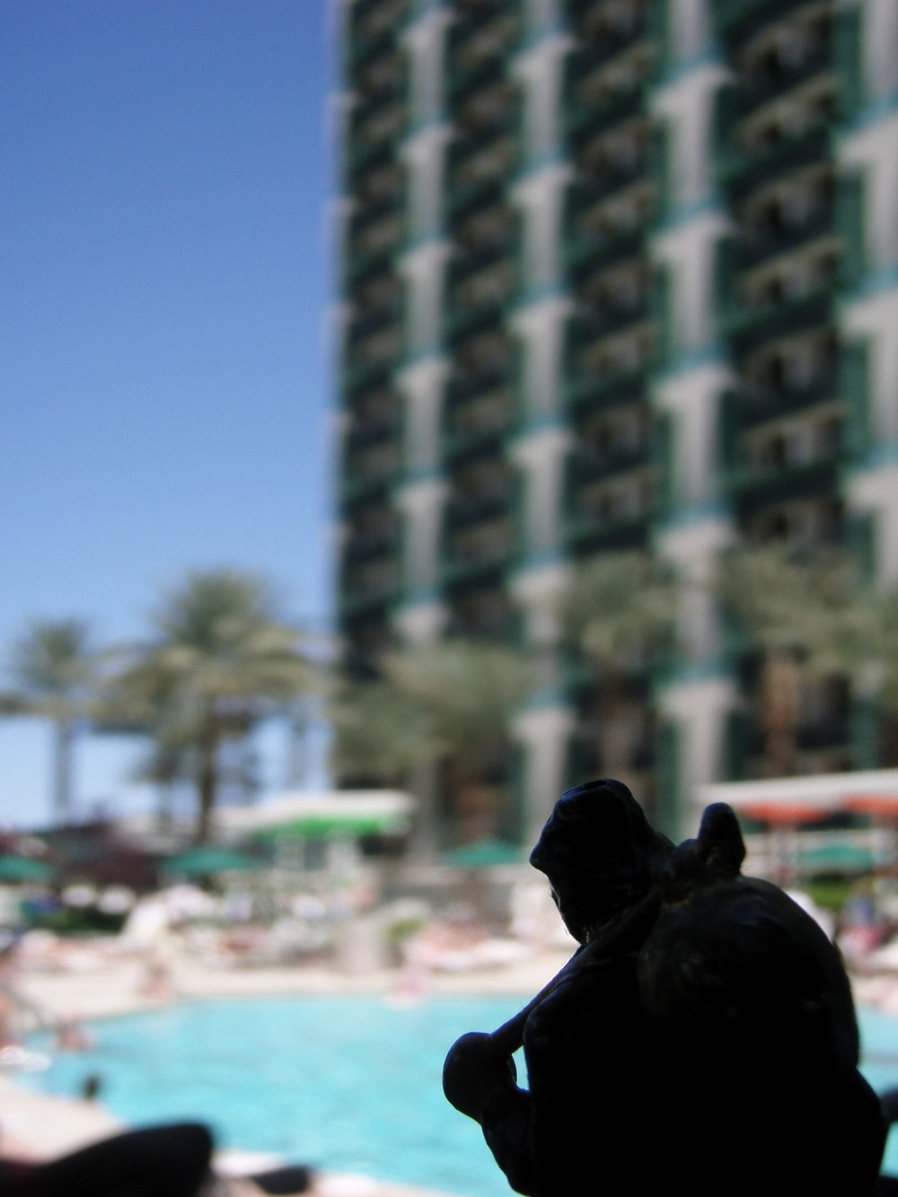 there are a lot of pools here…in the desert