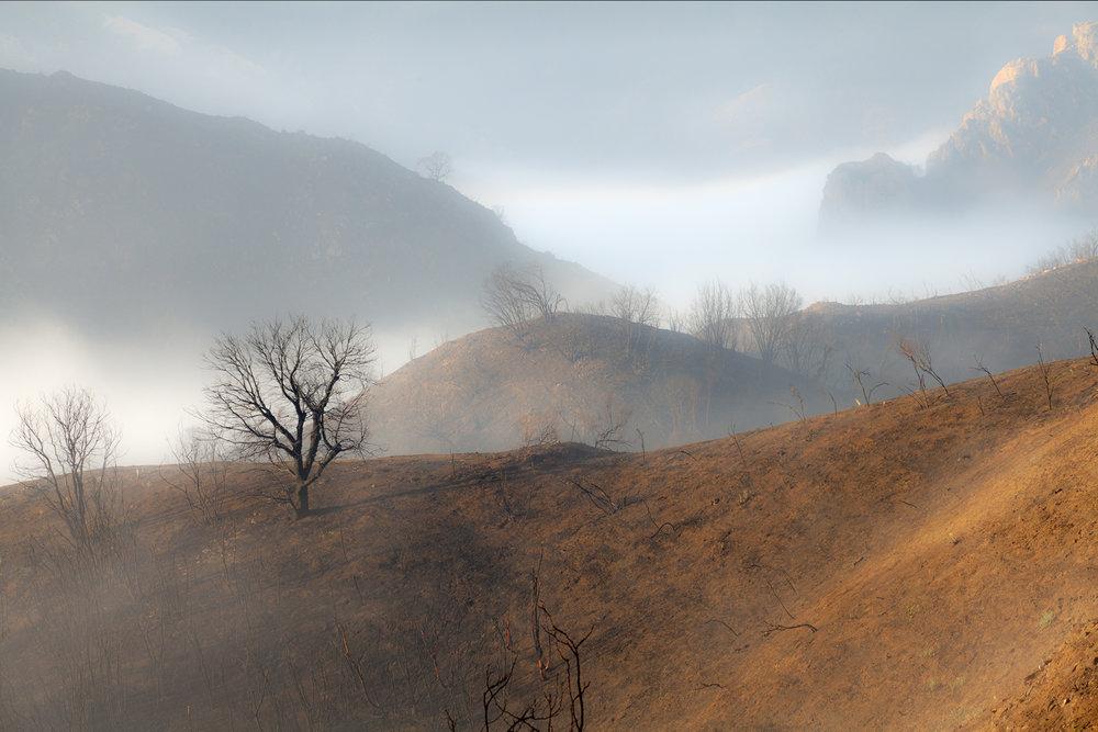 Kimball Hall Rising Mist.jpg