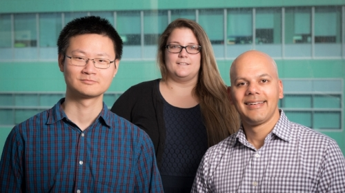 Saptarsi Haldar (right), Qiming Duan (left) and Sarah McMahon (center) find a new strategy to treat heart failure. [Photo: Chris Goodfellow, Gladstone Institutes]