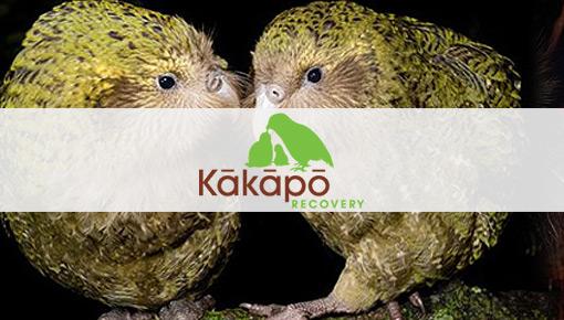 Kakapo Recovery