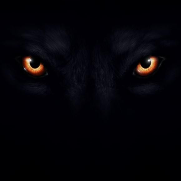 wolf eyes.jpg