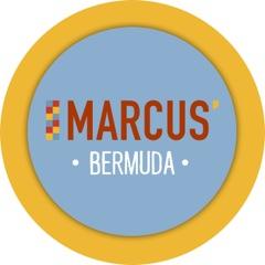 MSG_Bermuda_LogoOnly-2.jpeg
