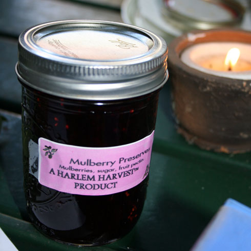 mulberry-preserves.jpg