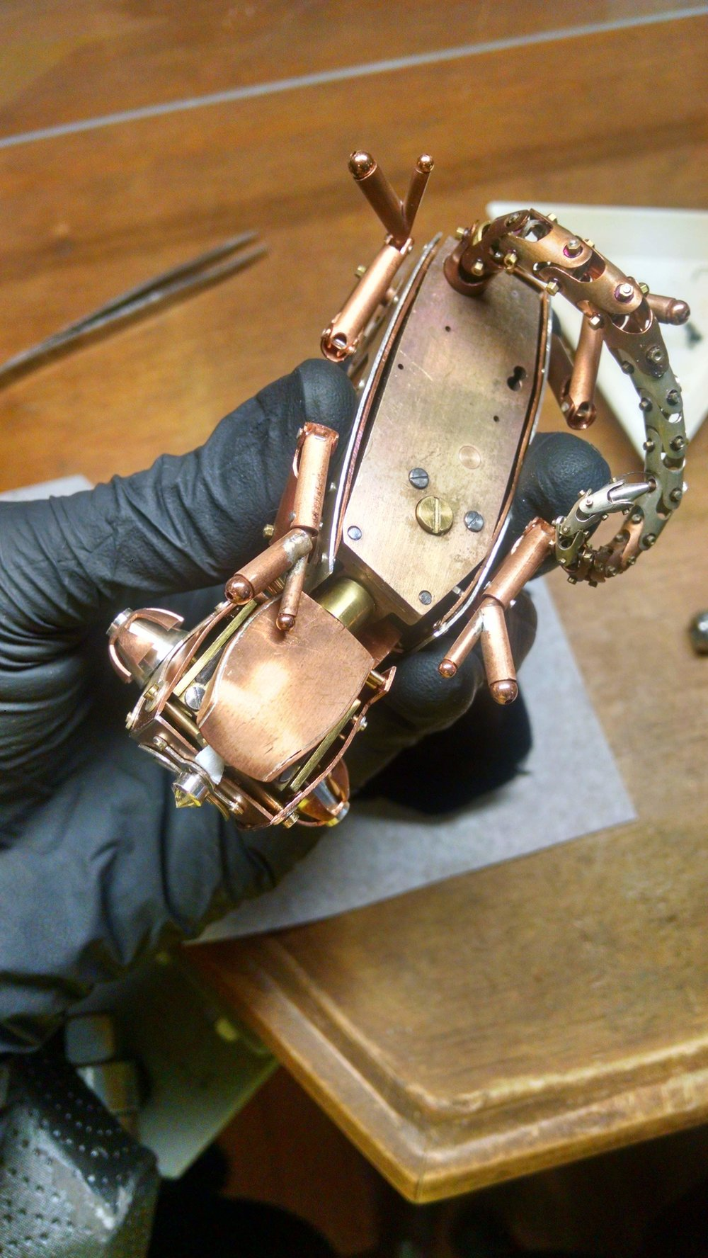 Chameleon Automaton Belly