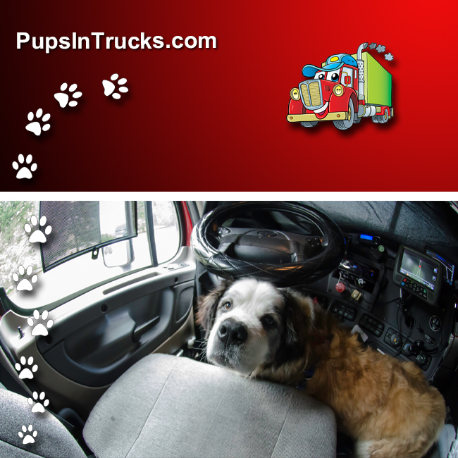PupsInTrucks.com pet transport