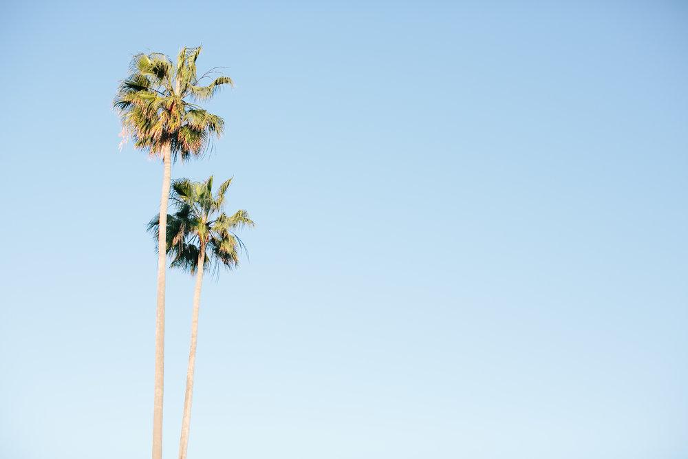 San Diego Family Photographer Christine Dammann