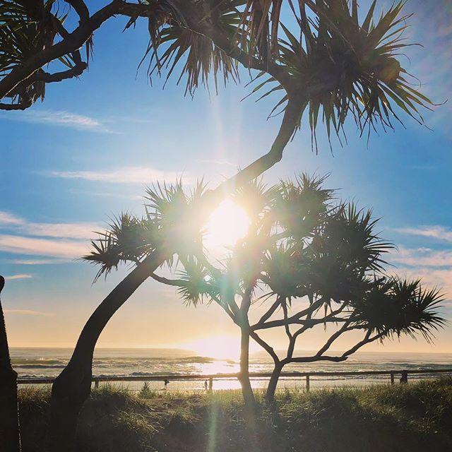 Sunshine and waves , perfect mix . • #corrocean #bumpsandbarrels #goldcoast