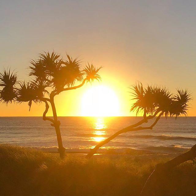 Sun ✅ Waves ❎. • #corrocean #bumpsandbarrels #goldcoast