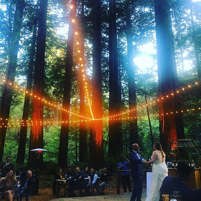 Our friend Lauren got married tonight in a redwood grove. It was spectacular. Grateful for good friends, a table of awesome people(!!) and the serenity of tall trees. Congratulations to @laurennataliephotography we love you!!