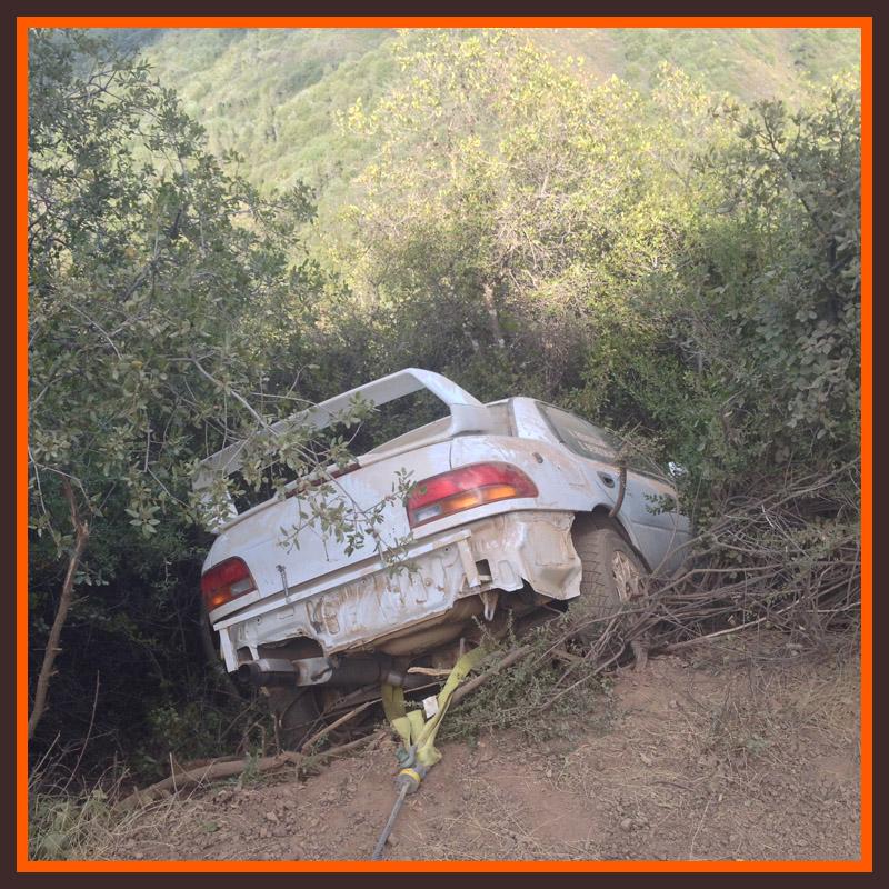 Mendocino Rally 2015