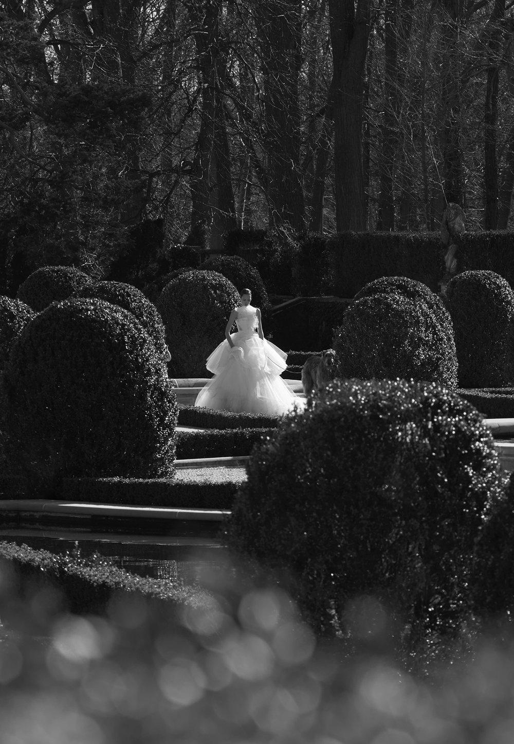 Vera Wang Bridal 5.jpg