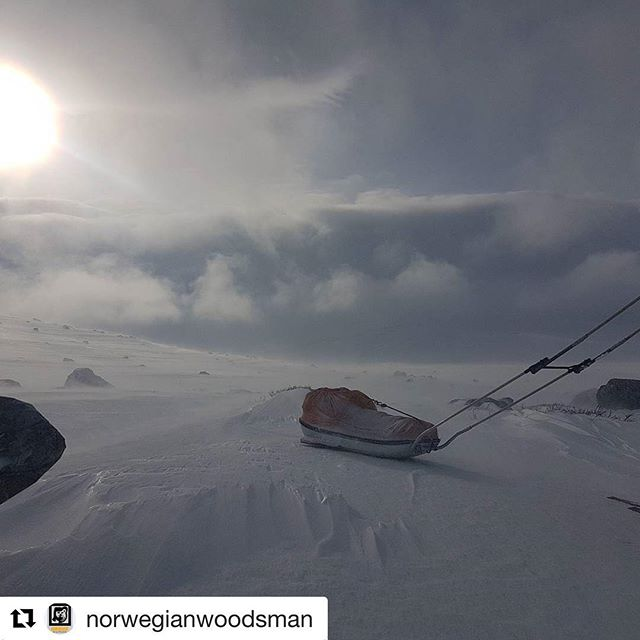 Dagens blinkskudd. 😊 #Repost @norwegianwoodsman ・・・ Missing this place #trekking #lovenature #nofilter #villmarksliv #norway #paracord #wilderness #trail #nature #liveterbestute #utno #bushcraft #hiking #adventure #bergans #friluftsmagasinet #dovrefjell #ursusvillmarksliv #englishsetter #jakt #expedition #survival #outdoors #nowifi #hunting