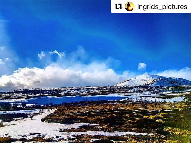 Dagens blinkskudd. 😊 #Repost @ingrids_pictures ・・・ Beautiful day at the mountains ❤  #snøhetta #bns_norway #exceptional_pictures  #mittnorge #visitlillehammer #fotocatchers #sky_sultans #got__greatshots #igscandinavia #ig_world_photo #bns_vision #bestofnorway #majestic_earth_ #colors_of_day2 #ilovenorway #amazing_shots #earth_shotz #instagood #loves_reflections #riyets #dreamchasersnorway #brilliantnorway #instagood #lost_world_treasures #artofvisuals  #splendid_horizon #dovrefjell #superb_photos #princely_shotz #norgerundt