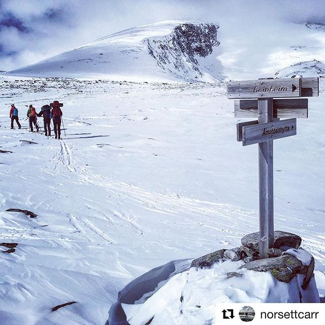 Dagens blinkskudd. 😊 #Repost @norsettcarr ・・・ På tur med @trondhjemsturistforening #dovrefjell #silvacompass @turistforeningen #outdoor #headspace #getoutdoors #mittlekeland #norwayhike #norsktipping #utno #norskfriluftsliv #exerciseismedicine #endomondo #mountainequipment #devold #welcometonature #liveterbestute #fjellski #nasjonalparkriket #snøhetta