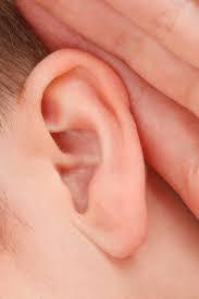 Lstening ear.png