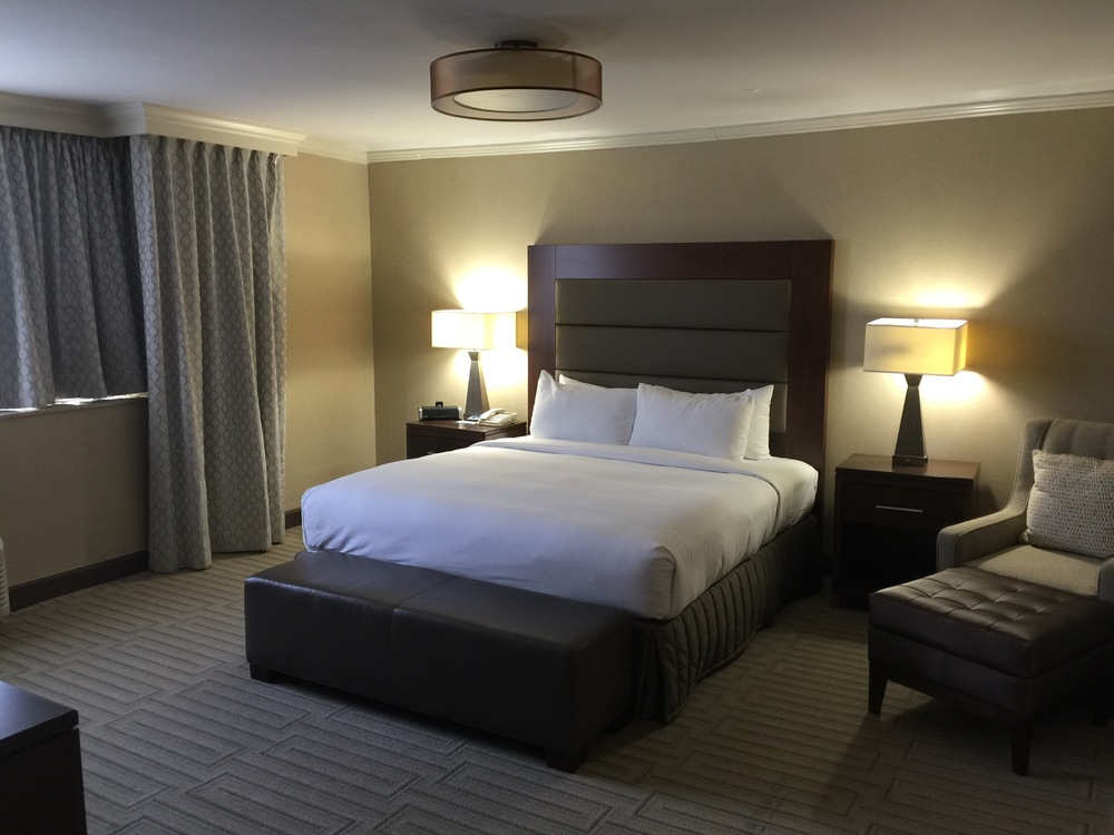Hilton Crystal City Rooms