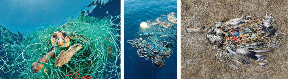 parley-for-the-ocean_plastic.jpg