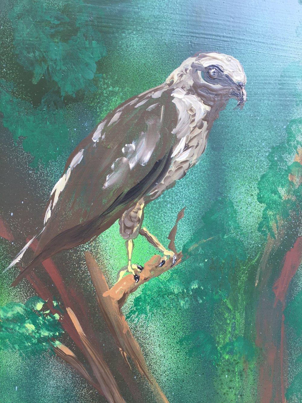 Bennett SS Bird.jpg