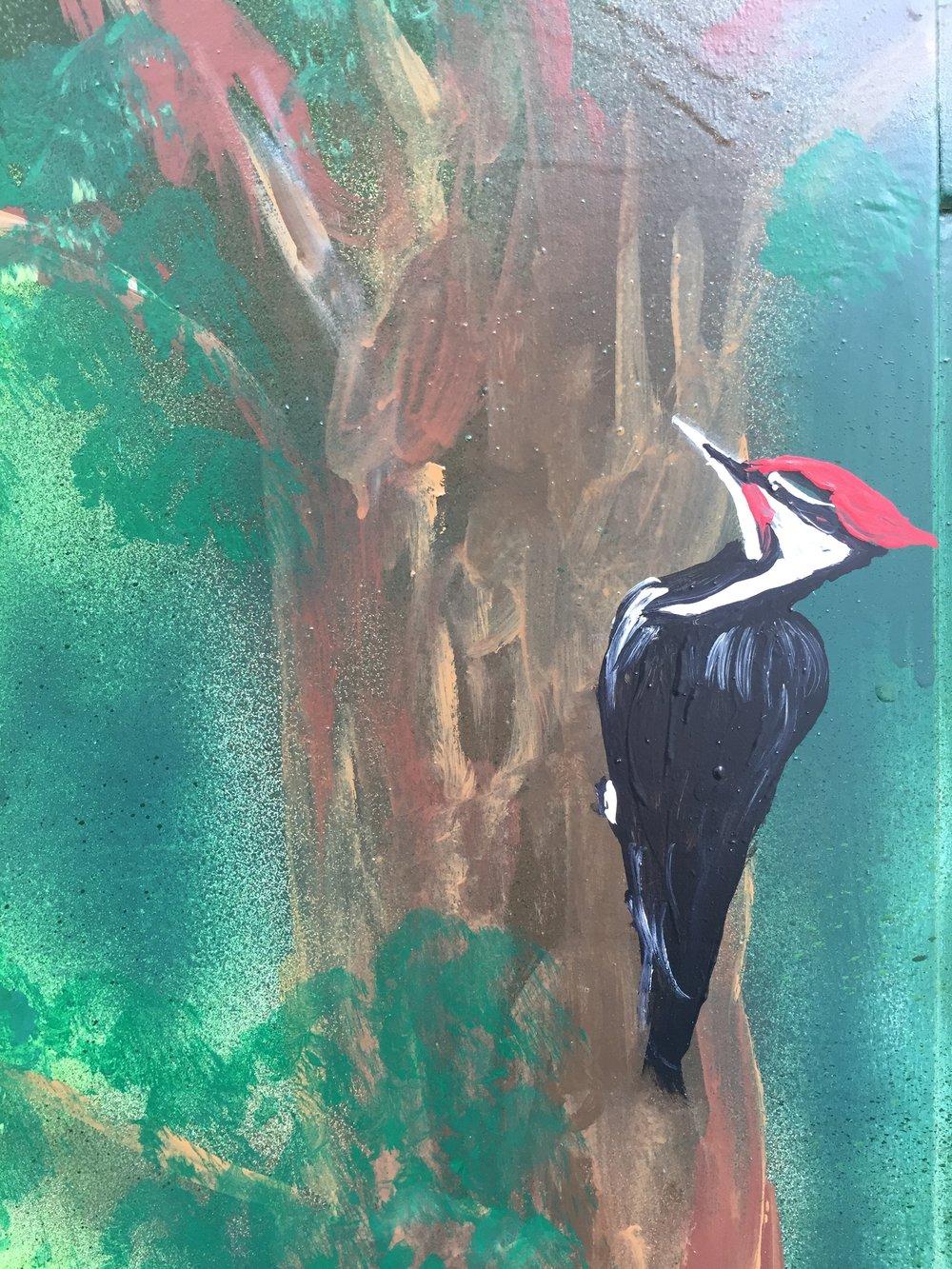 Bennett SS Woodpecker.jpg