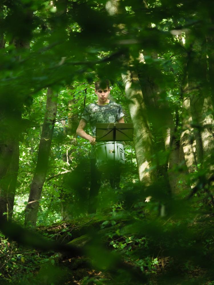 152+Sound+Tracks+Forest+Walks+-+photo+by+Ash+Mills.jpg