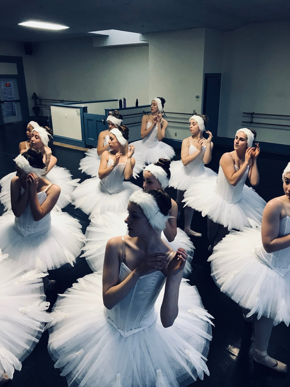 The Swan Maidens.jpeg
