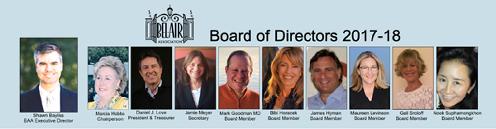 BAA Board 1000.jpg