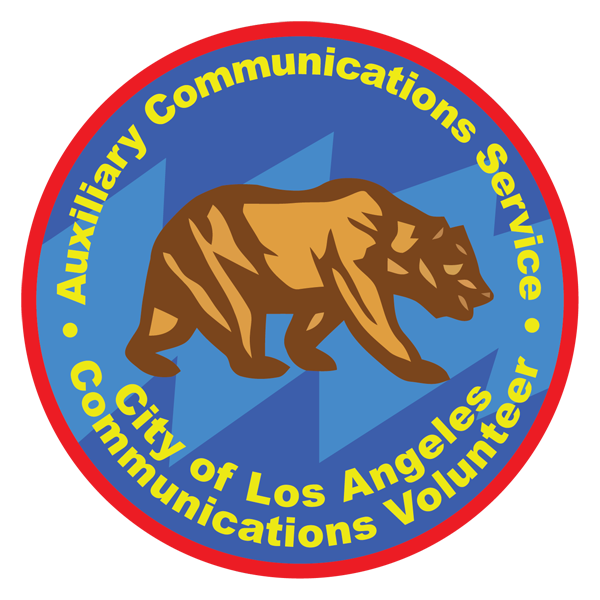 ACS Patch -3b copy 600.png